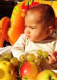 Het portret van de herfst van een babyjongen Royalty-vrije Stock Foto