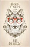 Het portret van de Hipsterwolf met glazen, hand getrokken grafische illustartion Royalty-vrije Stock Foto's