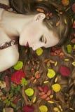 Het portret van de manier van een mooie jonge vrouw stock foto's