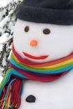 Het portret van de sneeuwman Stock Afbeelding