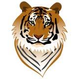 Het Portret van de tijger Royalty-vrije Stock Foto's