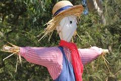 Het portret van de vogelverschrikker Royalty-vrije Stock Fotografie