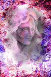 Het portret van de vrouwenfee, illustratiecollage met ornamenten vector illustratie