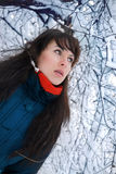 Het portret van de winter Stock Fotografie