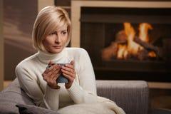Het portret van de winter thuis Stock Foto