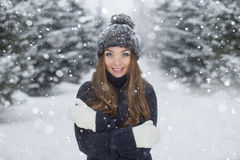 Het portret van de winter van jong mooi meisje royalty-vrije stock afbeelding