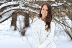 Het portret van de winter van mooie glimlachende vrouw royalty-vrije stock afbeelding