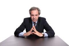 Het portret van de zakenman stock fotografie