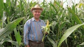 Het portret van een Bejaarde Landbouwer In een Hoedenglimlach houdt Maïskolfgraan stock videobeelden