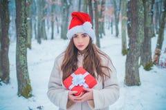 Het portret van een mooie vrouw kleedde een laag Het Meisje van de schoonheidswinter in ijzig de winterpark Uitstekende de winter stock foto's