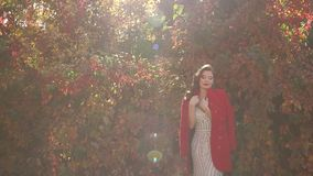 Het portret van een schitterend meisje in een kleding en een rood bedekken en in een de herfstpark met een laag stock videobeelden