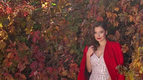 Het portret van een schitterend meisje in een kleding en een rood bedekken en in een de herfstpark met een laag stock footage