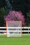 Het portret van het Doel van de lacrosse royalty-vrije stock fotografie