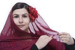 Het portret van het flamenco Royalty-vrije Stock Foto