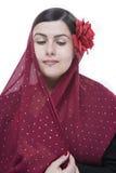 Het portret van het flamenco Stock Foto's