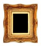 Het portret van het frame Stock Foto
