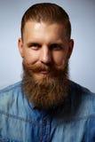 Het portret van het glimlachen mustachioed en gebaarde mens stock afbeelding