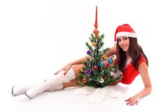 Het portret van Kerstmis stock afbeeldingen