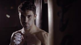 Het portret van knappe bokser wordt klaar aan doos bekijkend de camera stock footage