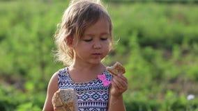 Het portret van meisje het eten homebaked brood op het gebied van organisch ecolandbouwbedrijf stock footage