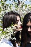 Het portret van mooie jonge meisjes, zusters kleedde zich in ernoe en Royalty-vrije Stock Foto