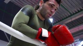 Het portret van professionele bokser rust op ringside in onderbreking stock video