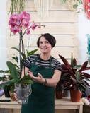 Het portret van vrouwenbloemist met orchideephalaenopsis in schort en het hulpmiddel in bloem winkelen royalty-vrije stock afbeelding