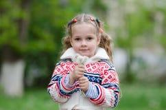 Het portretmeisje van vier jaar met boeket witte paardebloemen in de handen van stock afbeeldingen