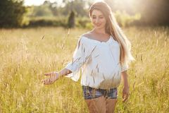 Het positieve jonge wijfje voorziet voor baby, wandelt over tarwegebied, geniet van zonnige dag, raakt groen gras Openluchtschot  stock afbeeldingen