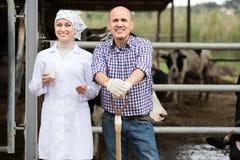 Het positieve veterinaire babbelen met landbouwer Royalty-vrije Stock Afbeeldingen