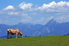 Het prachtige berglandschap van Beieren Royalty-vrije Stock Afbeeldingen