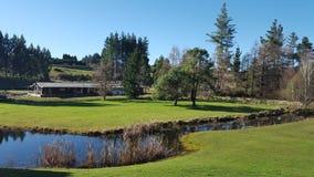 Het prachtige rustige landschap van Nieuw Zeeland met rivier, bomen Royalty-vrije Stock Foto