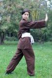 Het praktizeren van de vrouw oefeningstai chi Royalty-vrije Stock Foto