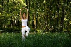 Het praktizeren van de vrouw yoga in hout Royalty-vrije Stock Foto's