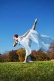 Het Presteren van de ballerina royalty-vrije stock afbeeldingen