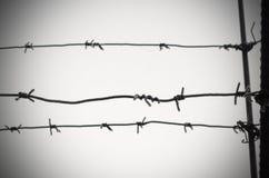 Het prikkeldraad is een symbool van unfreedom, ontbering en concentratiekampen stock foto