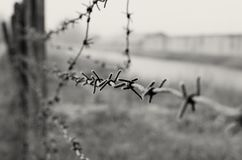Het prikkeldraad is een symbool van unfreedom, ontbering en concentratiekampen stock fotografie
