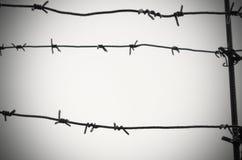 Het prikkeldraad is een symbool van unfreedom, ontbering en concentratiekampen stock afbeelding