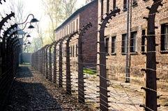 Het Prikkeldraad van Auschwitz Stock Foto