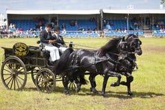 Het privé Drijven bij de Herts-Provincie toont 2014 Royalty-vrije Stock Afbeeldingen