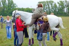Het proberen om een paard te berijden Stock Foto