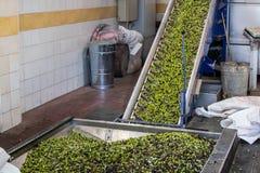 Het procédé van de olijfolieextractie in een molen van de olijfoliepers in Griekenland Stock Foto