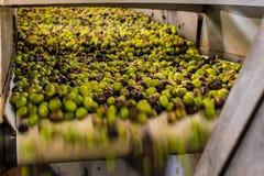Het procédé van de olijfolieextractie in een molen van de olijfoliepers in Griekenland Royalty-vrije Stock Foto