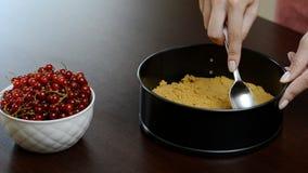 Het proces om kaastaart te maken stock videobeelden