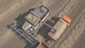 Het proces om korrel van leeg te maken combineert om in rug van een vrachtwagen te oogsten stock videobeelden