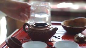 Het proces om thee bij de theeceremonie te brouwen stock video