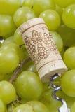 Het proces van de wijn Royalty-vrije Stock Foto's