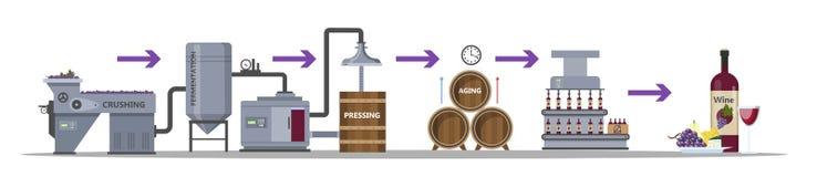 Het proces van de wijnproductie Verouderende en bottelende drank stock illustratie