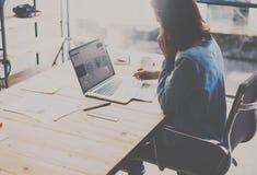 Het procesconcept van het studentenwerk Foto die van jonge vrouw aan universitair project met laptop computer bij houten werken stock afbeeldingen