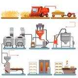Het processtadia van de broodproductie van tarweoogst aan vers gebakken brood vectorillustraties royalty-vrije illustratie